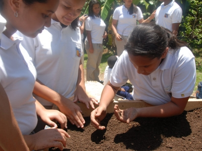 Creation of Calasanz School Garden