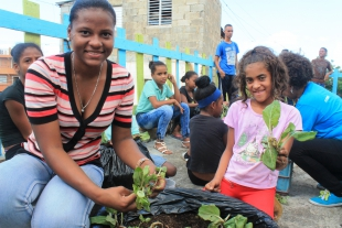 Centro Educativo Jardín del Saber Sets up its First Urban Roof Garden Thanks to EcoHuertos