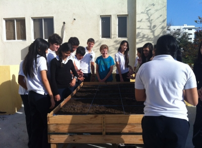 Creation of the Babeque School Garden