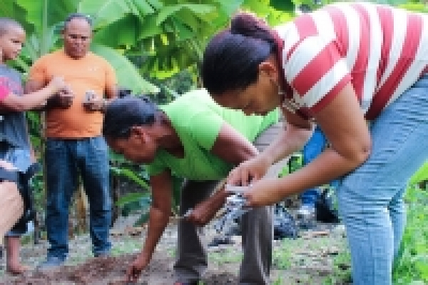 Creation of Bernardina Agramonte Family Garden