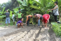 GFDD's New Series of Eco-Courses Aid Sustainable Agricultural Development in the Dominican Republic